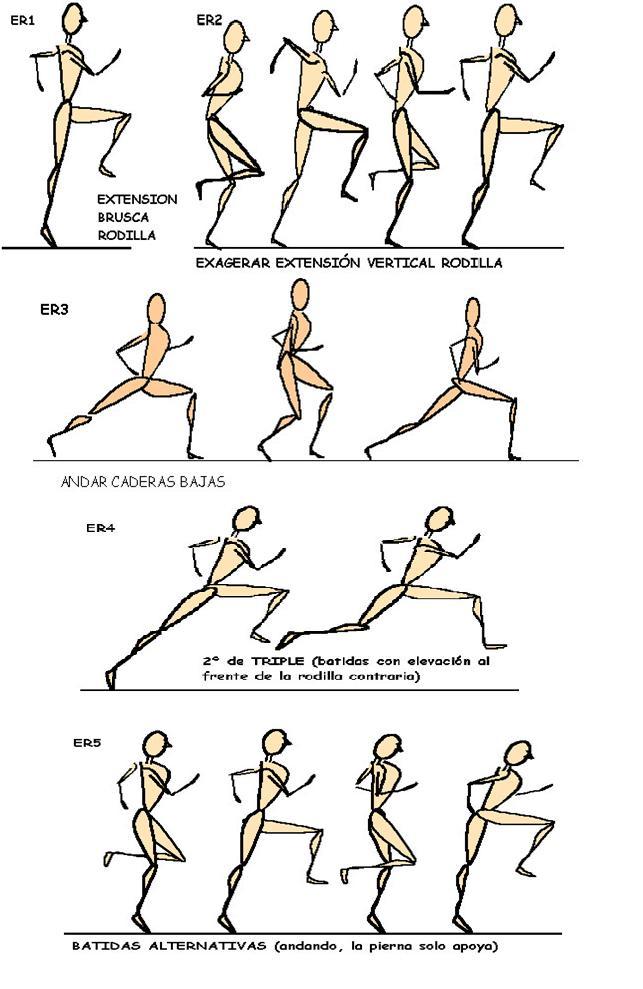 Anatomía del Corredor - Ciclo de la Marcha