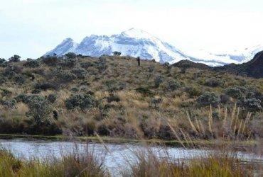 El Trail Running, un accidente que transformó mi estilo de vida - Carlos Fernando Conde
